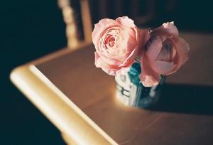 每日一句能量:爱,不为伟大,只为细小。从微小的小事件中体现博大的爱。——德兰修女
