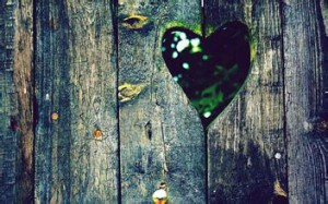 每日一句能量:我的心因为爱情的痛楚要胀裂开来。——纳博科夫