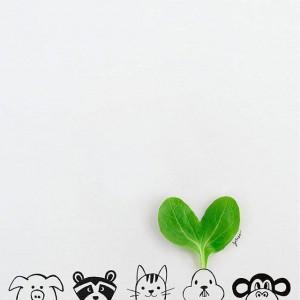 每日一句能量:人生有葱动,才会有姜来。千万不要遇到一点挫折就蒜了!!!